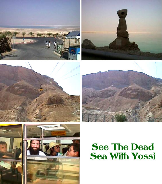 See The Dead Sea with Yossi